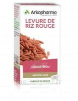 Arkogélules Levure De Riz Rouge Gélules Fl/150 à Voiron