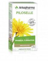 Arkogélules Piloselle Gélules Fl/45 à Voiron