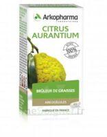 Arkogélules Citrus Aurantium Gélules Fl/45 à Voiron