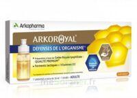 Arkoroyal Défenses Naturelles Gelée Adulte 7 Doses/10ml à Voiron