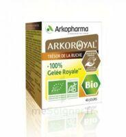 Arkoroyal 100% Gelée Royale Bio Gelée Pot/40g à Voiron
