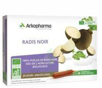 Arkofluide Bio Ultraextract Radis Noir Solution Buvable 20 Ampoules/10ml à Voiron