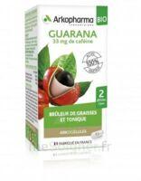 Arkogélules Guarana Bio Gélules Fl/45 à Voiron