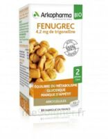 Arkogélules Fenugrec Bio Gélules Fl/40 à Voiron