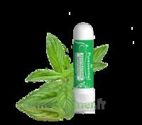 Puressentiel Respiratoire Inhaleur Respiratoire Aux 19 Huiles Essentielles - 1 Ml à Voiron