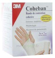 Coheban, Blanc 3 M X 7 Cm à Voiron