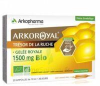Arkoroyal Gelée Royale Bio 1500 Mg Solution Buvable 20 Ampoules/10ml à Voiron