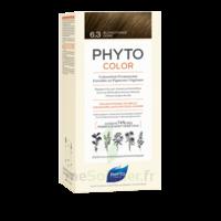 Phytocolor Kit Coloration Permanente 6.3 Blond Foncé Doré à Voiron