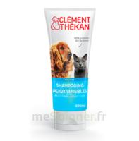Clément Thékan Shampooing Peaux Sensibles T/200ml à Voiron