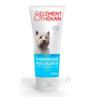Clément Thékan Shampooing Poils Blancs T/200ml à Voiron