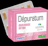 Lehning Dépuratum Gélules Drainage Détox B/60 à Voiron