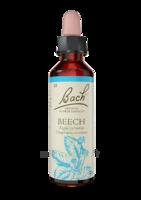Fleurs De Bach® Original Beech - 20 Ml à Voiron