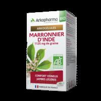 Arkogélules Marronnier D'inde Bio Gélules Fl/45 à Voiron